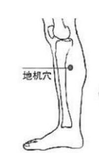 中医针灸艾灸按摩